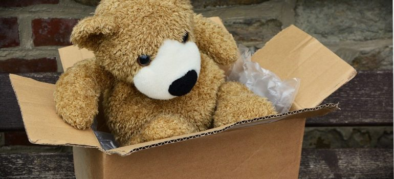 teddy in a box