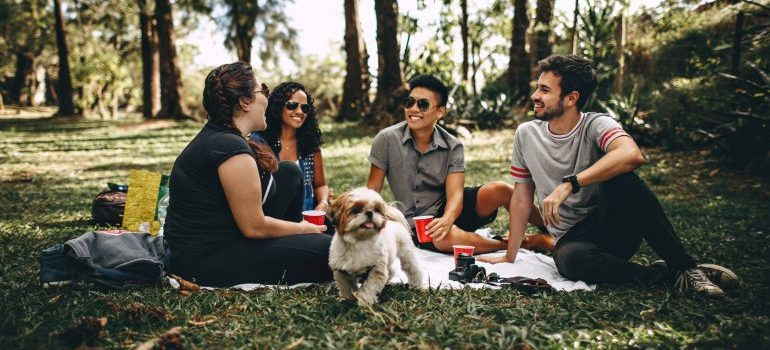 Friends chatting in a park