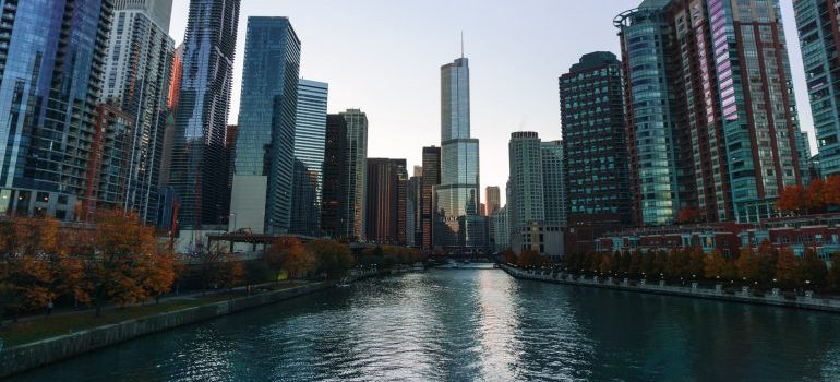 chicago river and buildings around it